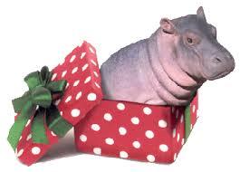 A Christmas Hippo
