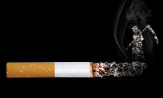 Gempur Rokok Ilegal, Laporkan Keberadaannya Melalui Hotline Bea Cukai