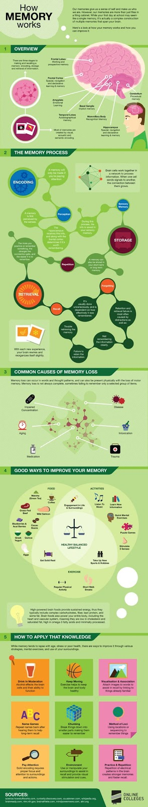 memory and how it works