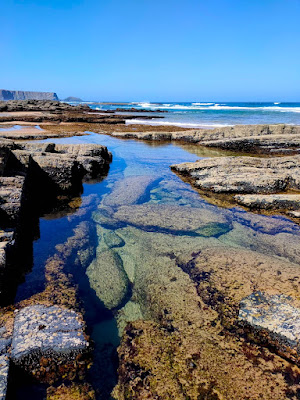 Salzwasser Safari Portugal