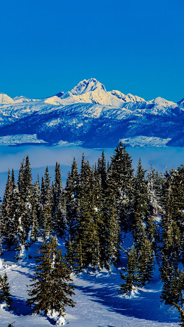 Mountains, Trees, Snow, Clouds, Winter, Landscape
