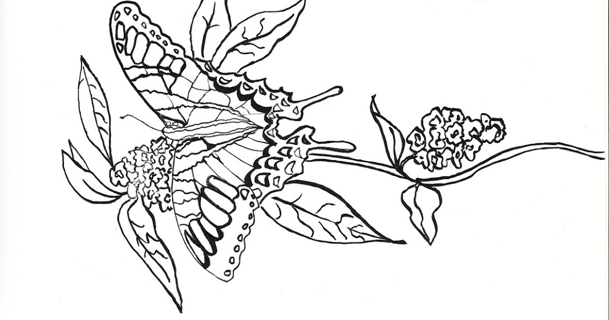 Make it easy crafts: Printable Butterfly coloring greeting