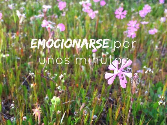 http://mediasytintas.blogspot.com/2016/04/emocionarse-por-unos-minutos.html