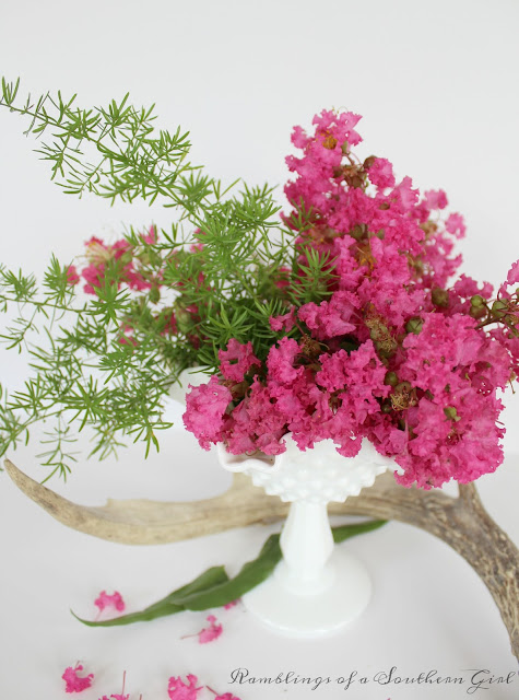 Ranblings of a Southern Girl clever ways to display Crepe Myrtles