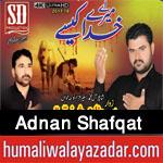 http://www.humaliwalayazadar.com/2017/10/adnan-shafqat-nohay-2018.html