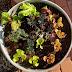 Salad Bowl Gardening