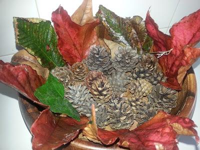 diy-otoño