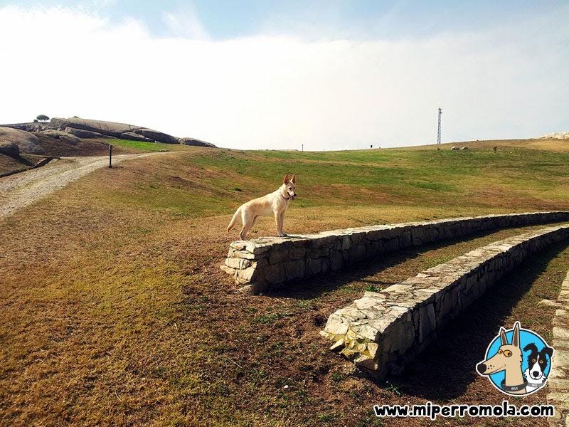 Can de Palleiro en el Parque de Bens