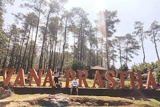 Vanaprastha Gedong Songo Park : Hutan Pinus Di Tengah Kawasan Candi