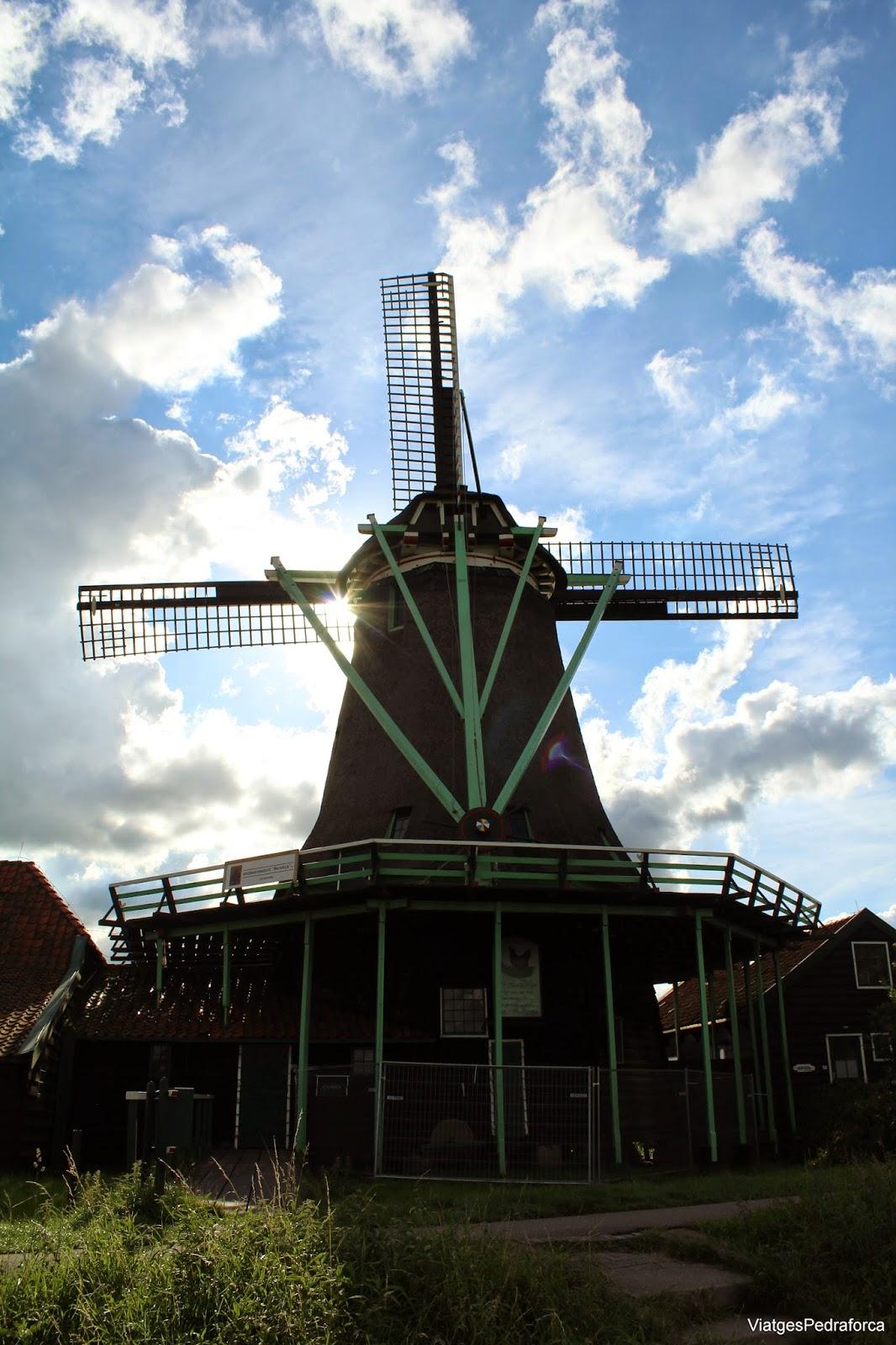 Zaanse Schans Holanda Països Baixos