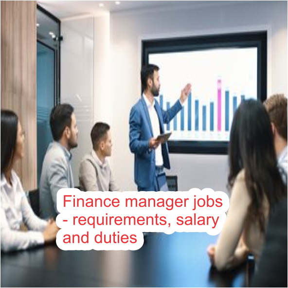 Finance manager jobs - requirements, salary and duties