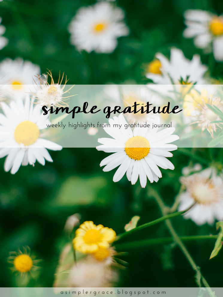 A weekly series focusing on practicing gratitude.  #gratefulheart #gratitude #feelingthankful #blogtemberchallenge