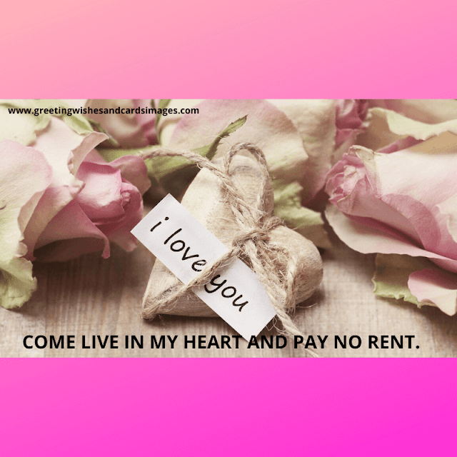14th Feb Valentine's Day 2020