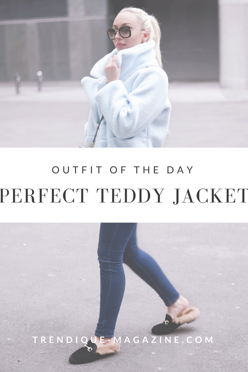 teddy jacket_sammydress review_winter streetstyle