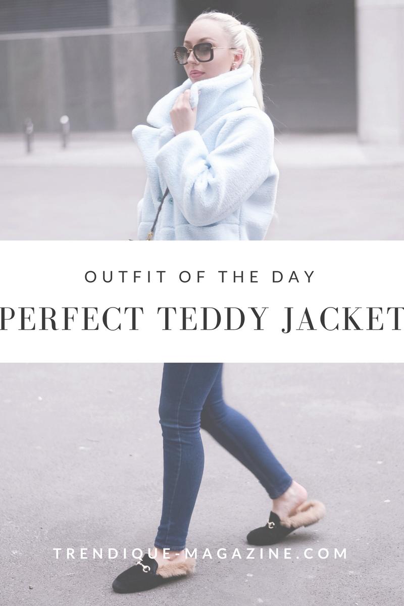 teddy jacket_sammydress review_winter streetstyle