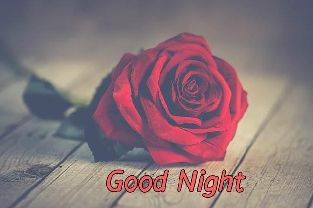 good-night-rose-flower-images-hd