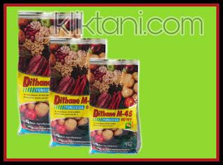 Keistimewaan dan Fungsi Fungisida DITHANE M45 80 WP Bagi Tanaman