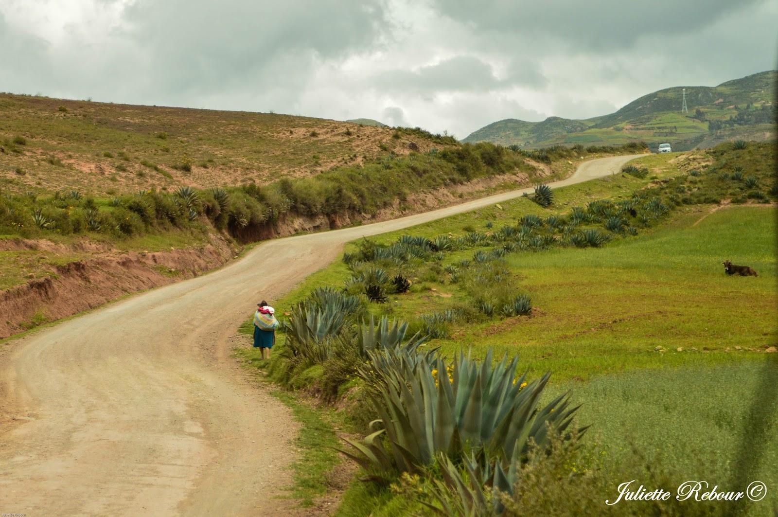 Route de Moray, Pérou