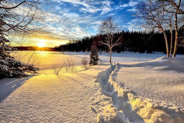 خلفيات الجليد والشمس