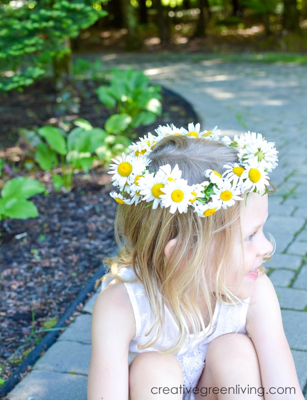 Step by step tutorial for how to make a flower crown from daisies. The DIY tutorial shows you how to make a daisy chain from wildflowers. This same technique works to make a flower headband or flower crown from any soft stemmed flower like daisies, dandelions or other wildflowers. #daisycrown #daisychain #flowercrown #naturecrafts