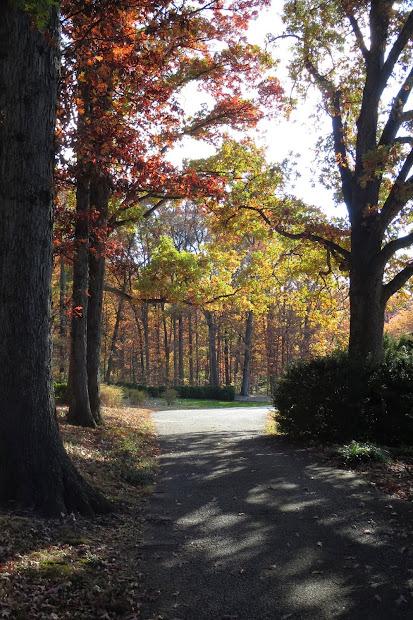 1003 Gardens Fall Weekend National Arboretum