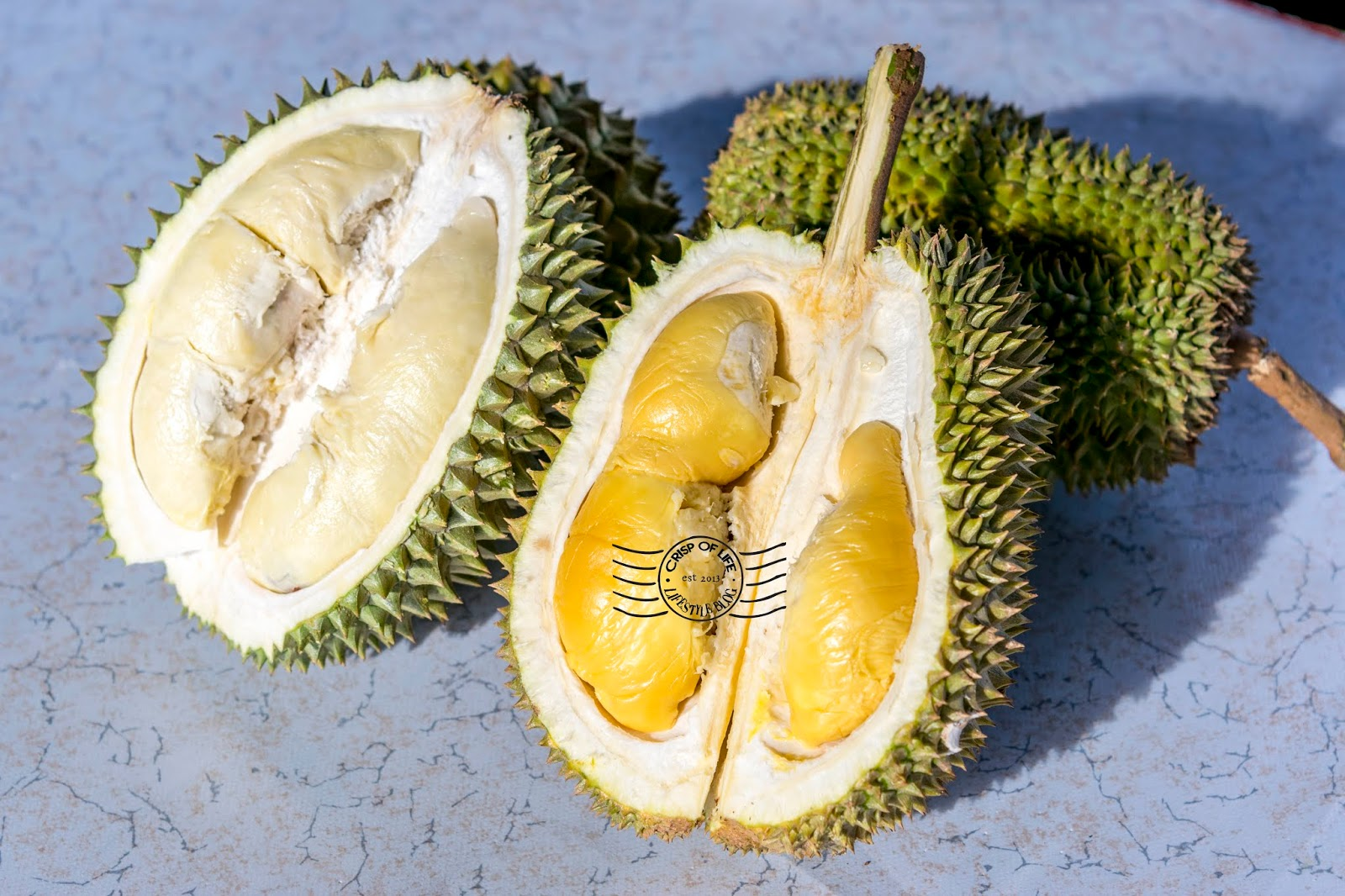 Eat All Durian As You Like In Iconic Hotel Penang For RM 45nett Per Person