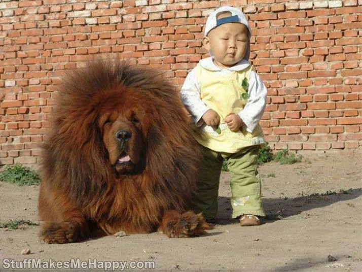 17. Toddler and his bodyguard