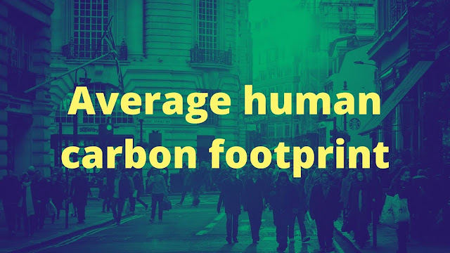 Average human carbon footprint