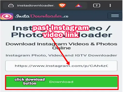 save from net instagram, ig video downloader, instagram video download, download video ig, save instagram video, save video ig, instagram video converter, insta video download online,