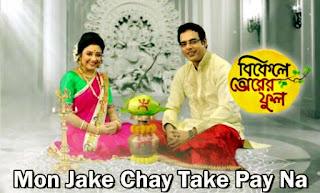 Mon Jake Chay Take Pay Na - Zee Bangla Serial Song (মন যাকে চায় তাকে পায় না)