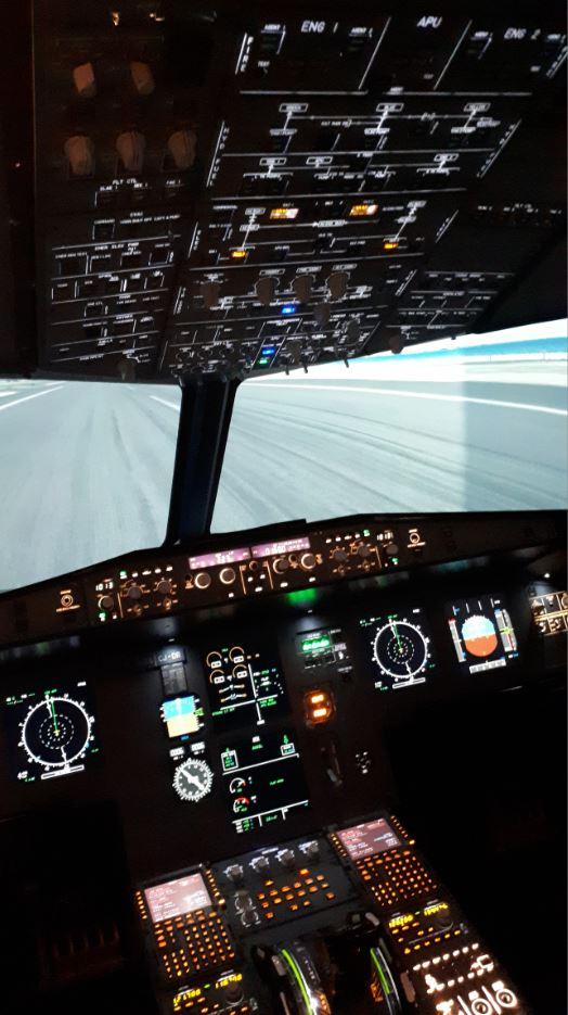 Photo prise lors de ma session de pilotage en Airbus en 2020