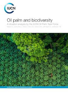Palmöl-Bericht: Artensterben verschärft sich