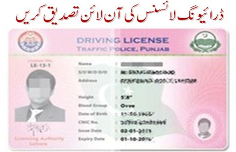How to Verify a Valid Driving License Online - Pakistan Hotline