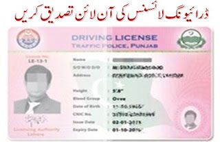 driving-license-verification
