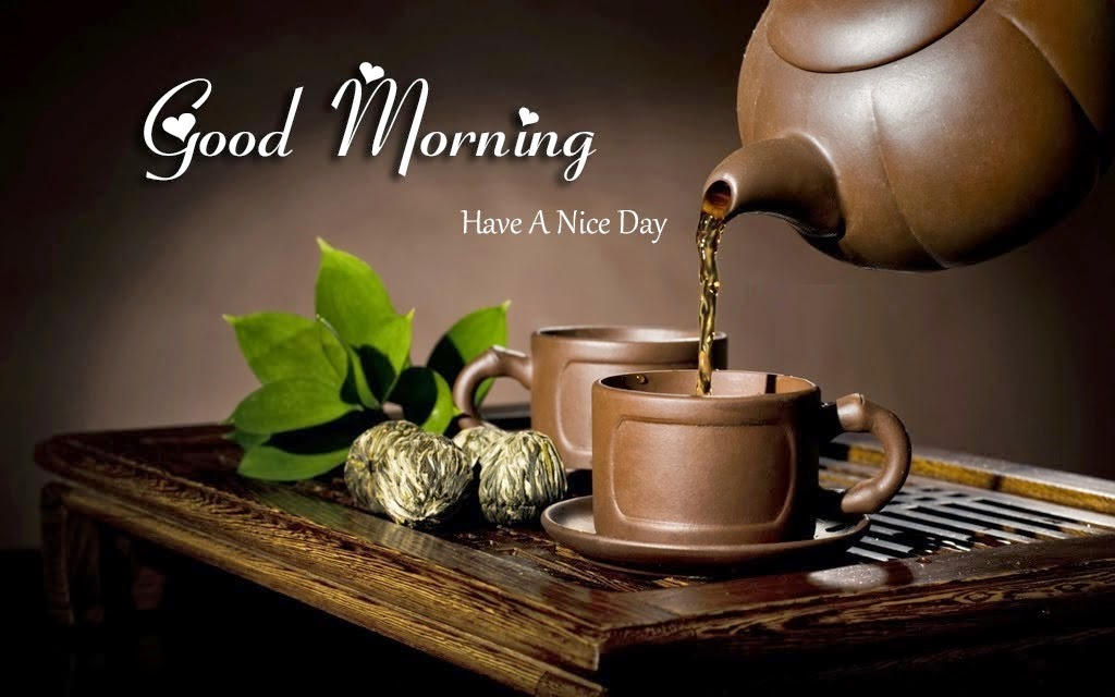 Latest Good Morning Whatsapp Dp Hd Collection Zone