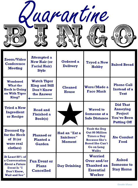 quarantine bingo card of activities and ideas
