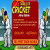 Play Tabletop cricket - Ashes edition game
