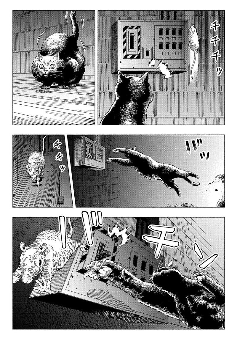อ่านการ์ตูน Nyaight of the Living Cat ตอนที่ 4 หน้าที่ 17