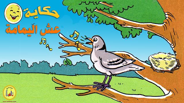 حكاية عش اليمامة ، مرجع المفيد في اللغة العربية المستوى الثالث