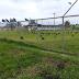 Em Sena Madureira quadra esportiva abandonada vira área de banho de sol para urubus
