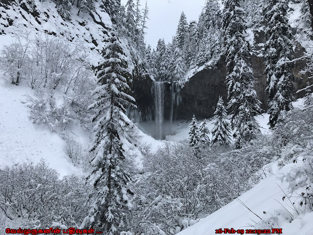 Tamanawas Falls in Winter