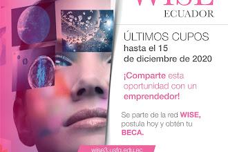 Últimos cupos para aplicar a al Programa Wise Ecuador