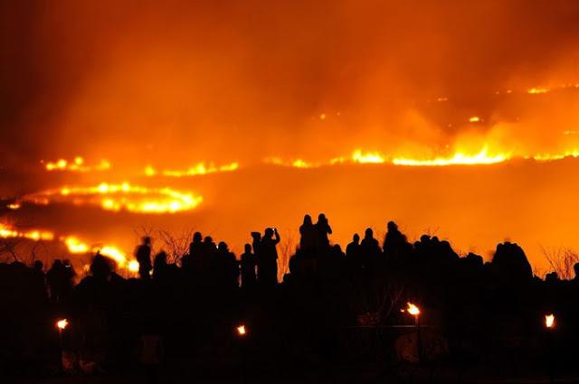自然が作り出した、山口県一の絶景。秋芳洞とカルスト大地【Yamaguchi】 山焼き