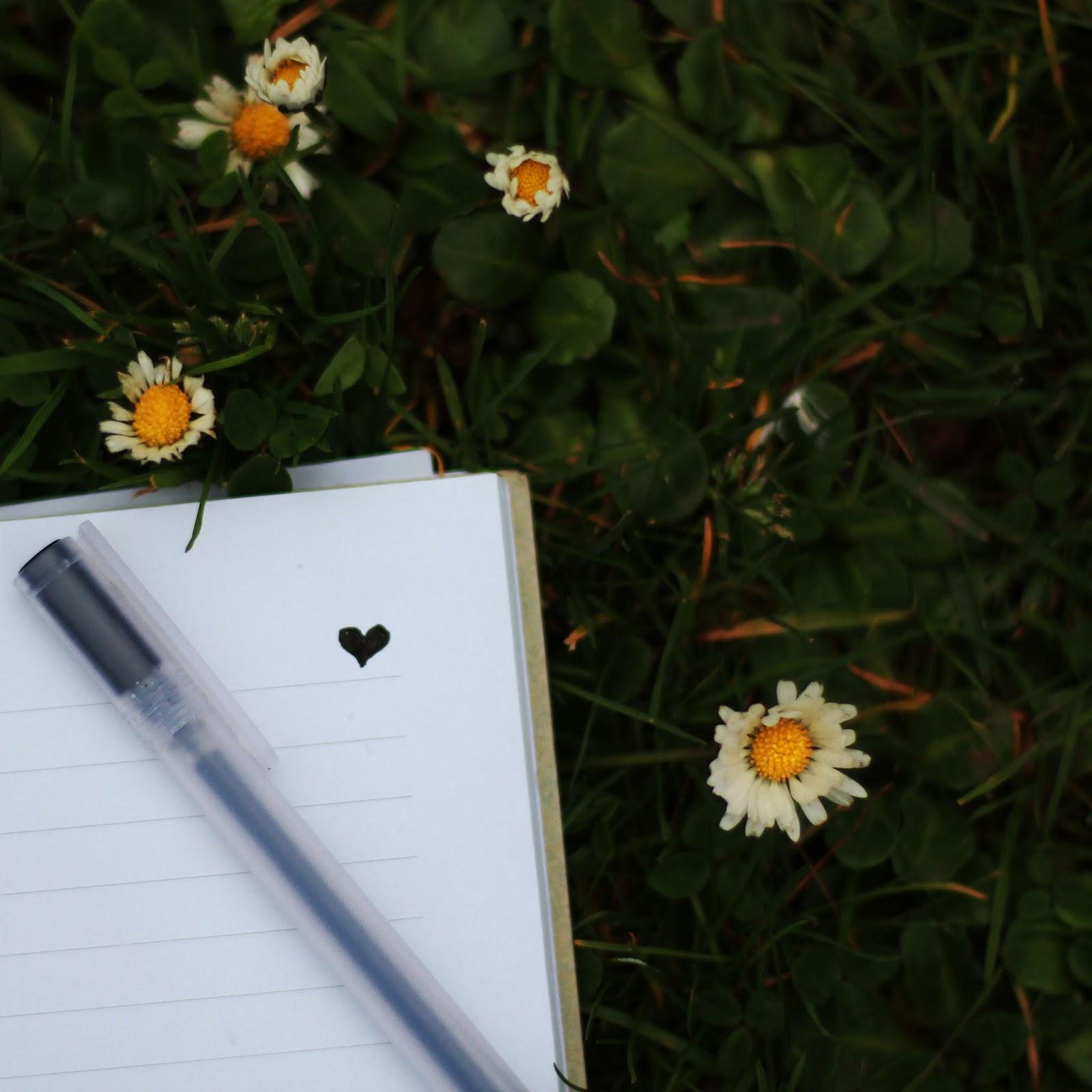 Words in Books I'll Never Write - Bash Harry - Flesh to Feel Bones to Break