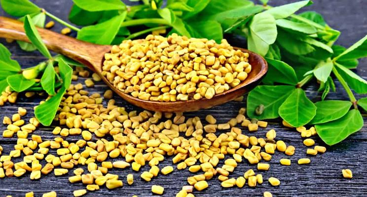 Fenugreek seeds Methi health benefits