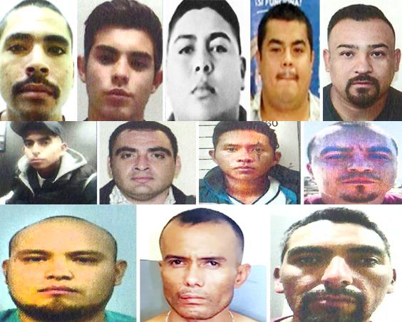 Ellos son los 12 terribles Sicarios de Los Chapitos , El CJNG y los Uriarte que se buscan en Baja California