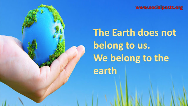 Slogan In World Environment Day 2019