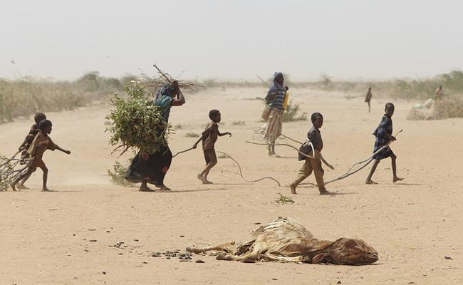 Gurun Somalia