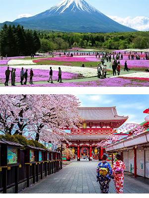 Tour Du lịch Nhật Bản 3 ngày 2 đêm