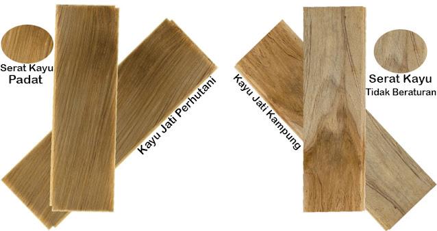 Perbedaan fisik kayu jati kampung dengan kayu jati perhutani